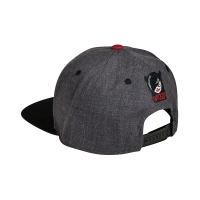 Wicked - Logo Cap